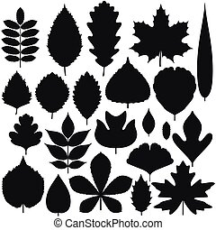 Set of tree leaves. Silhouette icons. Vector illustration.