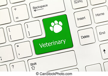 White conceptual keyboard - Veterinary green key with dog...