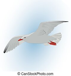 Seagull in the sky. Illustration.
