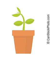 Plant in pot - Plant growing in pot Vector illustration