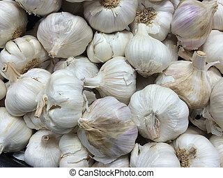 numerous Garlic bulbs - A closeup of numerous fresh Garlic...