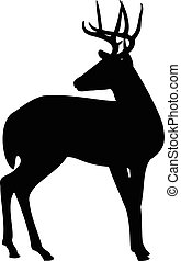Deer silhouette - Deer isolated on white background