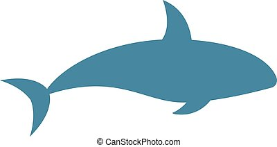 Killer whale Orcinus orca vector isolated on white...