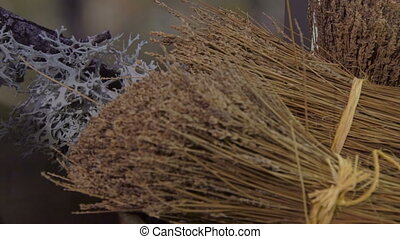 bunch of dried lavender on store