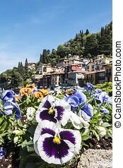 Varenna ( Lake Como ) - flowered balcony in Varenna