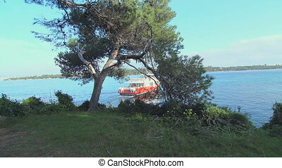 Ship floats away through the trees from the island of Saint...