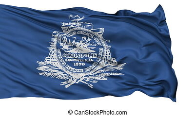 Isolated Waving National Flag of Charleston City -...