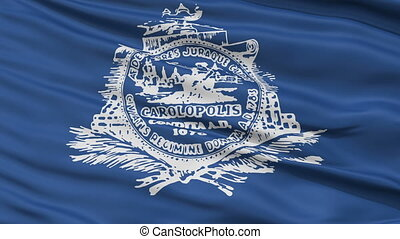 Close Up Waving National Flag of Charleston City -...