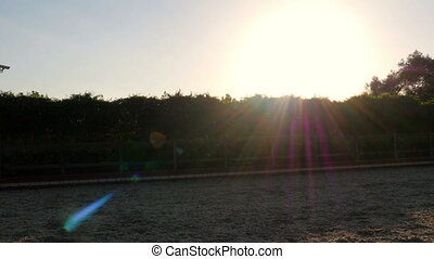 quot;dressage, horse show rider girl at sunsetquot; -...