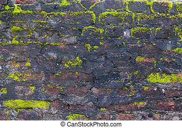 wall background texture stone