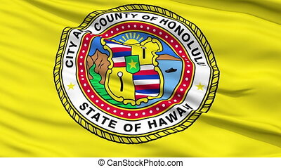 Close Up Waving National Flag of Honolulu City - Honolulu...