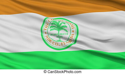 Close Up Waving National Flag of Miami City - Miami City...