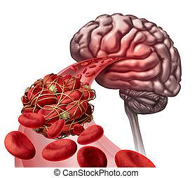 cérebro, sangue, coágulo,