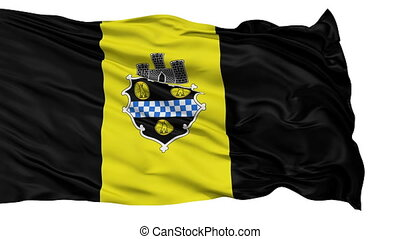 Isolated Waving National Flag of Pittsburgh City -...