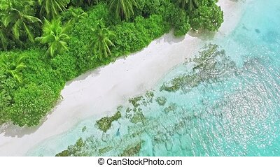 Hang over the edge of the shore on a tropical island in the...