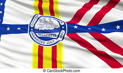 Close Up Waving National Flag of Tampa City - Tampa City...