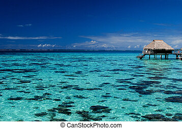 Blue lagoon with overwater bungalow - Unbelievably beautiful...