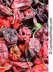 Habanero chilly pepper - Habanero is the most spicy chilly...