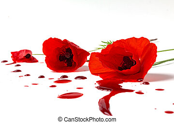 poppies with bloody
