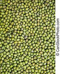 Mung Beans - Green and raw mung beans