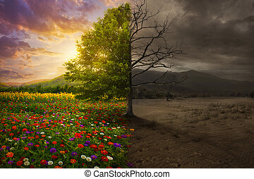 Life and death - Beautiful colorful landscape transforms to...