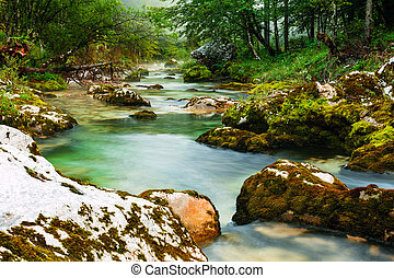 Canyon Mostnica near lake Bohinj in Slovenia Mostnice Korita...
