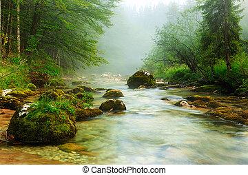 Canyon Mostnica near lake Bohinj in Slovenia Mostnice Korita...