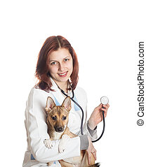 Woman veterinarian and dog isolated