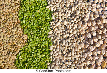 Mediterranean Flavors - Raw Food - Legumes: from left to...