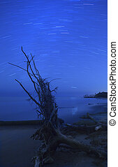 beach and star trails - star trails over beach with...