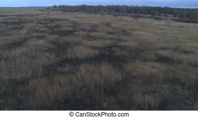 Field landscape aerial shot - Field and forest landscape...
