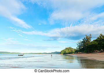 Tropical log wide shallow coastline tropical beach - Idyllic...