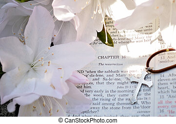 Holiday Easter photo of Bible verses - Mark 16 Easter Sunday...