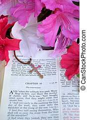 Vertical Easter image with bright pink flowers - Mark 16...