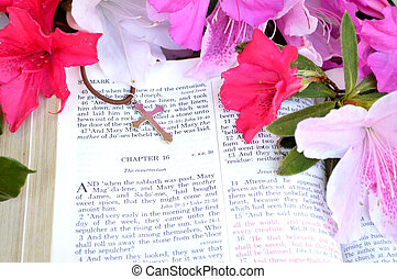 Easter scripture and cross with bright pink flowers - Mark...