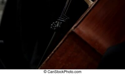 Playing on contrabass close-up HD