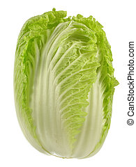 Napa Cabbage - Fresh and perfect head of napa lettuce or...