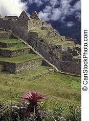 Macchu Picchu, Peru. - View of ancient city of Machu Picchu,...