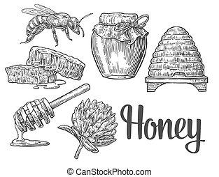 Honey set. Jars of honey, bee, hive, clover, honeycomb. -...