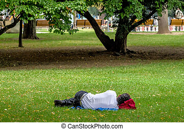 man sleeping in the park - man sleeping in a park...