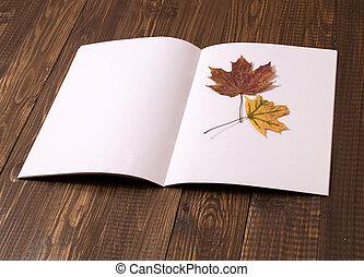 Blank sheet with a dried leaf