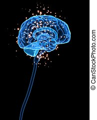 active brain - 3d rendered illustration of an active human...