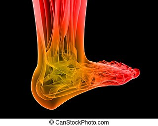 painful foot - 3d rendered illustration of human foot with...