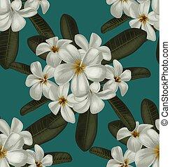 plumeria seamless pattern - Vector Illustration of plumeria...