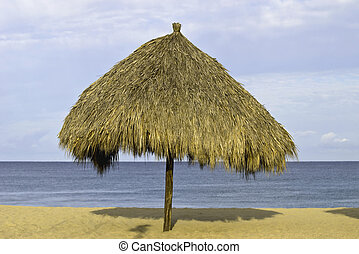 Palm thatched palapa on the beach - Palm thatched palapa on...