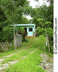 green jungle little house in Mayan riviera Mexico