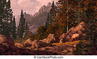 Elk In The Rocky Mountains - Elk bull grazing in a Rocky...