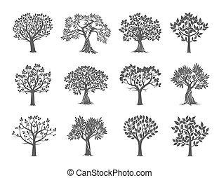 Collection of Trees. Vector Illustration.