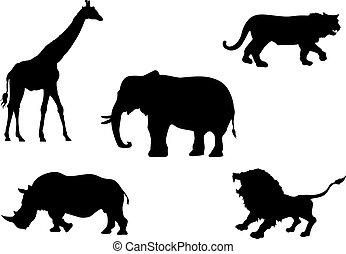 Wild animals - Vector silhouette of wild animals