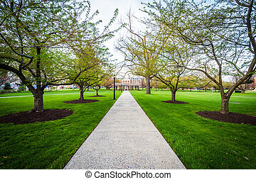 Trees along a walkway at Hood College, in Frederick,...